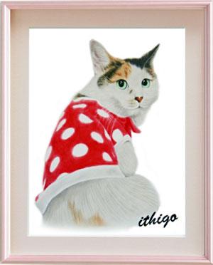 猫の野絵のプレゼント