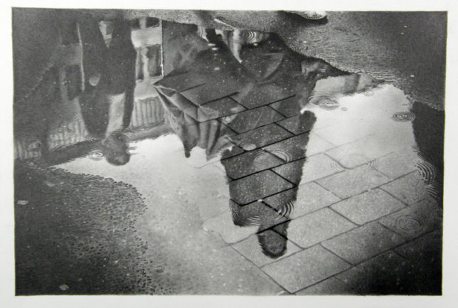 枝川真理の鉛筆画教室生徒作雨上がり