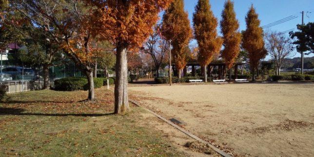 我が家の近くの公園
