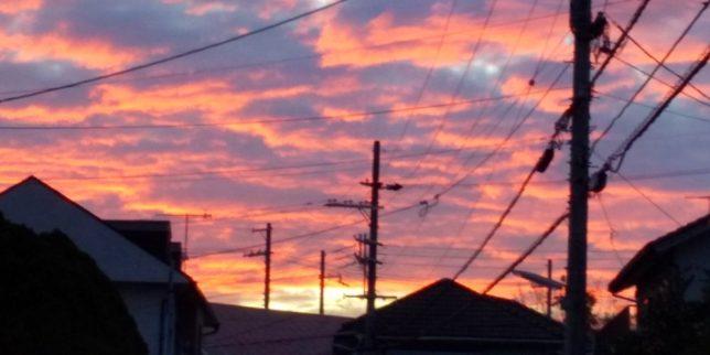 オレンジ色のきれいな夕焼け