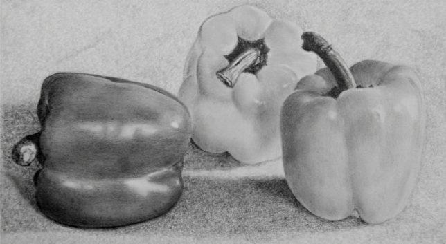 枝川真理の鉛筆画教室 受講生谷村さんの作品1